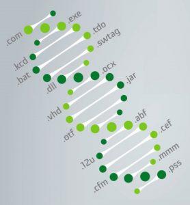 SAM-Insights adatgyűjtés